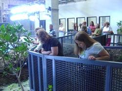 Behind the Scenes at Georgia Aquarium