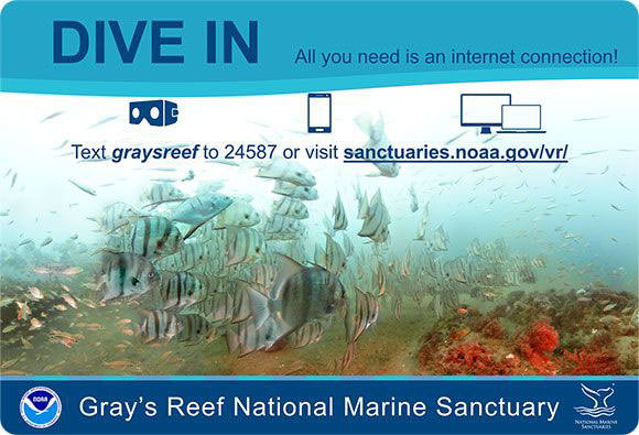 Gray's Reef Virtual Dive