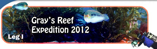 Gray's Reef Expedition 2012