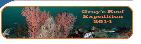 Gray's Reef Expedition 2014